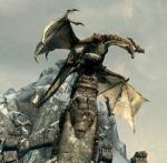 Dragon's Photo