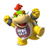 Bowser Jr's Photo